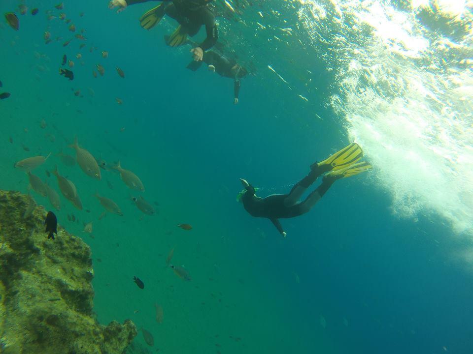 Techno Diving Lanzarote